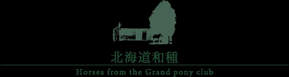 北海道和種