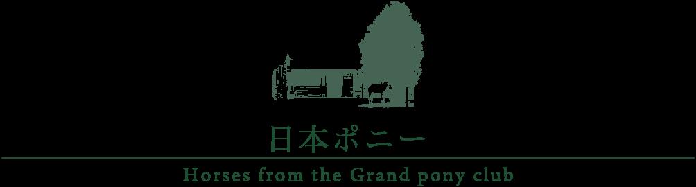 日本ポニー