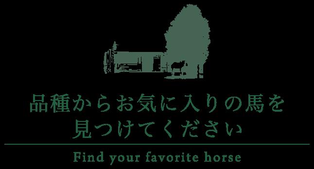 品種からお気に入りの馬を見つけてください